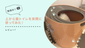 【レビュー】アイリスオーヤマの『上から猫トイレ』を実際に使ってみた!【動画あり】