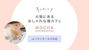 大阪にあるおしゃれな猫カフェ【MOCHA】イオンモール大日店に行ってみた!|レポート
